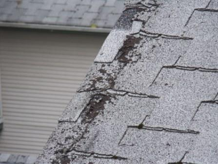 4-year overdue burned-out roof.